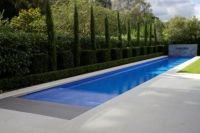 Pool Design, Clean Lap Pool Design Ideas With Trimmed Bush ...