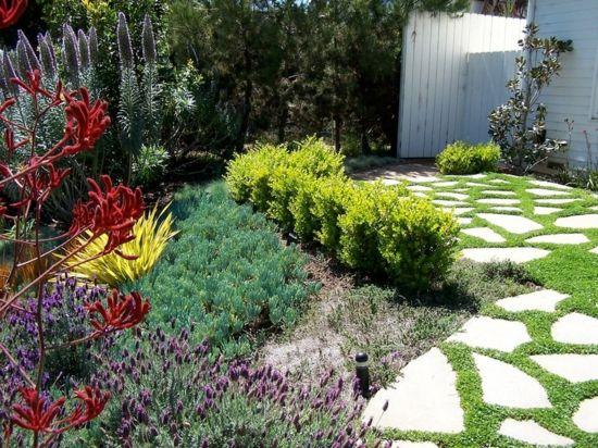 Gartengestaltung Ideen Beispiele, wie Sie Wasser sparen könnten - gartengestaltung ideen beispiele