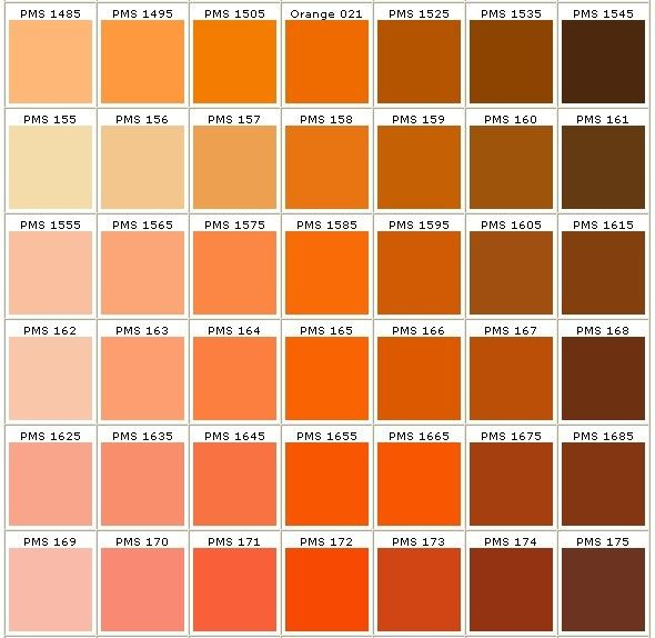 pantone colors in orange Orange Ingredients Pinterest - sample pantone color chart