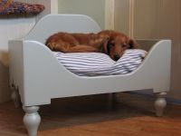 Beautiful Dog Bed For Your Cute Dog: Lovely Interior With ...