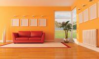 Orange Living Room Designs   orange rooms   Pinterest ...