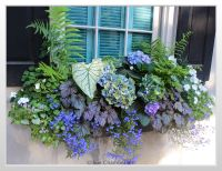 Flower Box Ideas For Partial Sun | www.pixshark.com ...