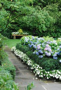 Garden plant hydrangea garden flower creative garden ideas ...