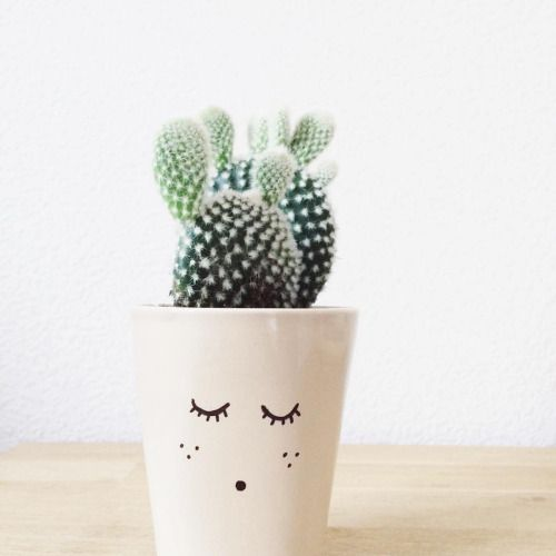 Cute Hipster Wallpaper Tumblr Cactus Google Search Cactusxs Pinterest