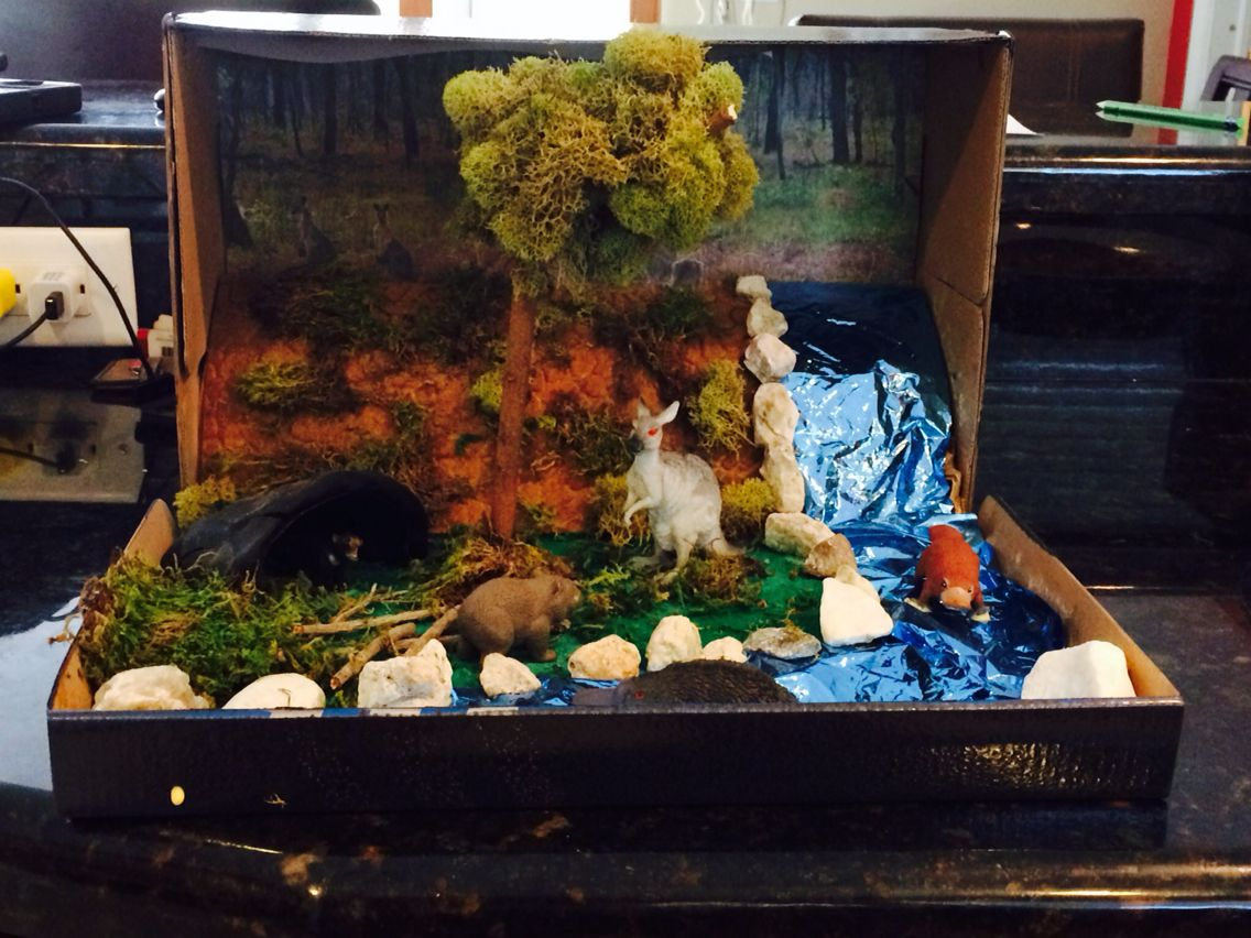 Shoe Box Australia Australian Bushland Diorama Craft Stuff Pinterest