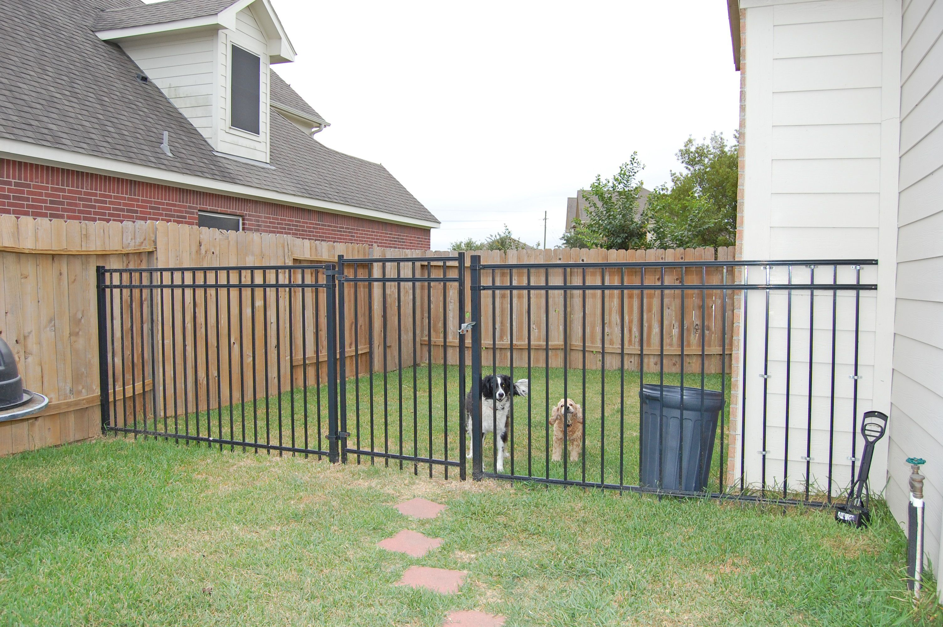 Dog Run Ideas Dog Run In Side Yard Backyard Bliss Pinterest Dog