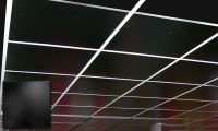 These ceiling tiles are actually made out of tin. Can come ...