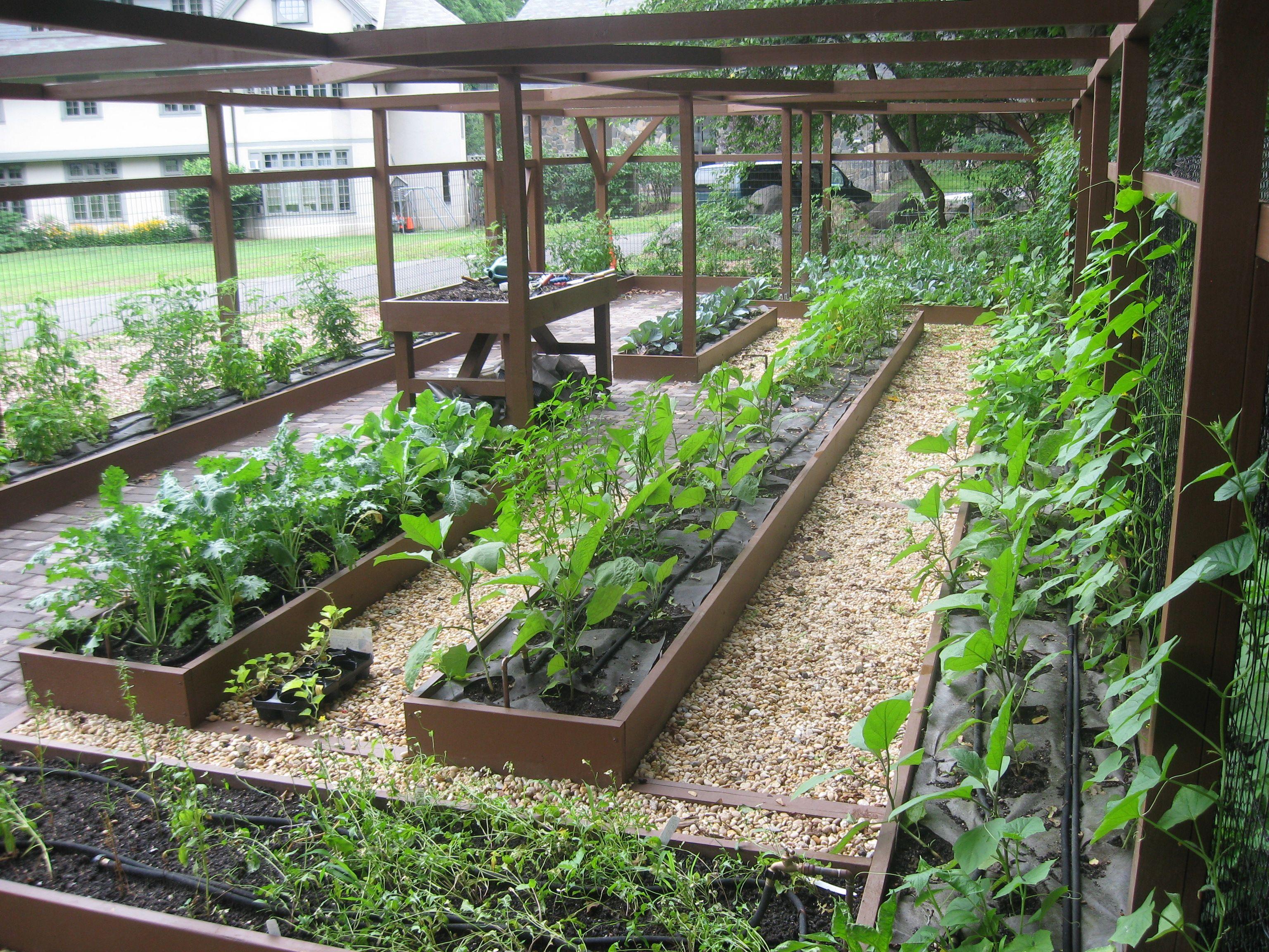 Secret landscaping landscaping ideas backyard ecosystems backyard vegetable gardensbackyard