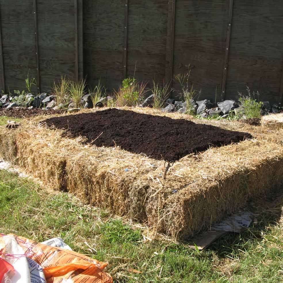 The no dig vegetable garden and at the end of the season you can dismantle the raised bed and use the hay bales for halloween decorations