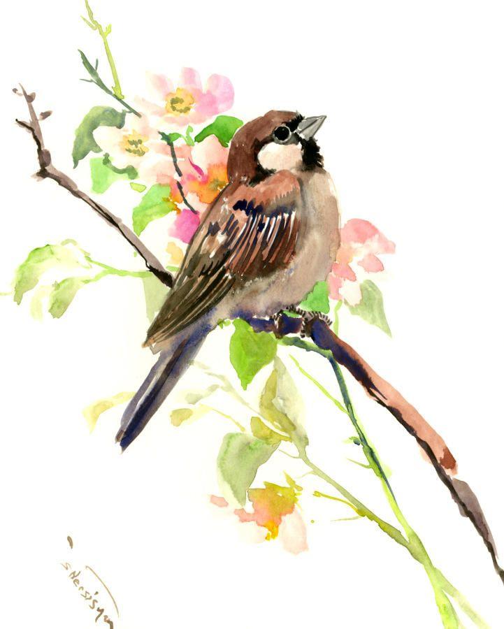 Sparrow And Spring Blossom art, 10 X 8 in, original