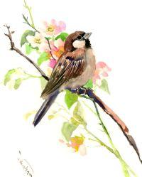 Sparrow And Spring Blossom art, 10 X 8 in, original ...