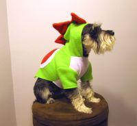 Yoshi Nintendo Super Mario Bros. Dinosaur - Dog Halloween ...