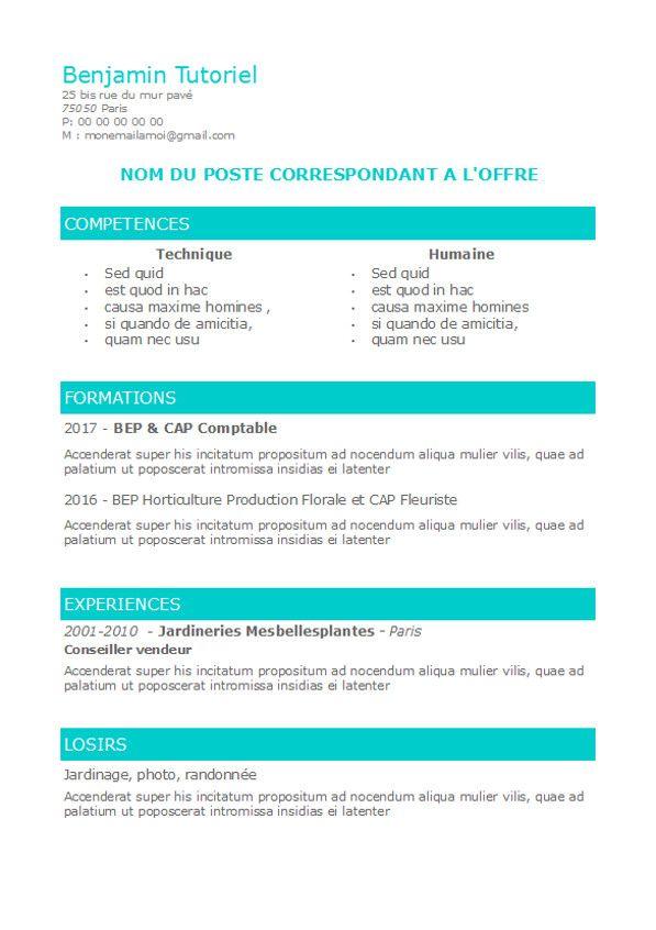 cv a competences pour debutant