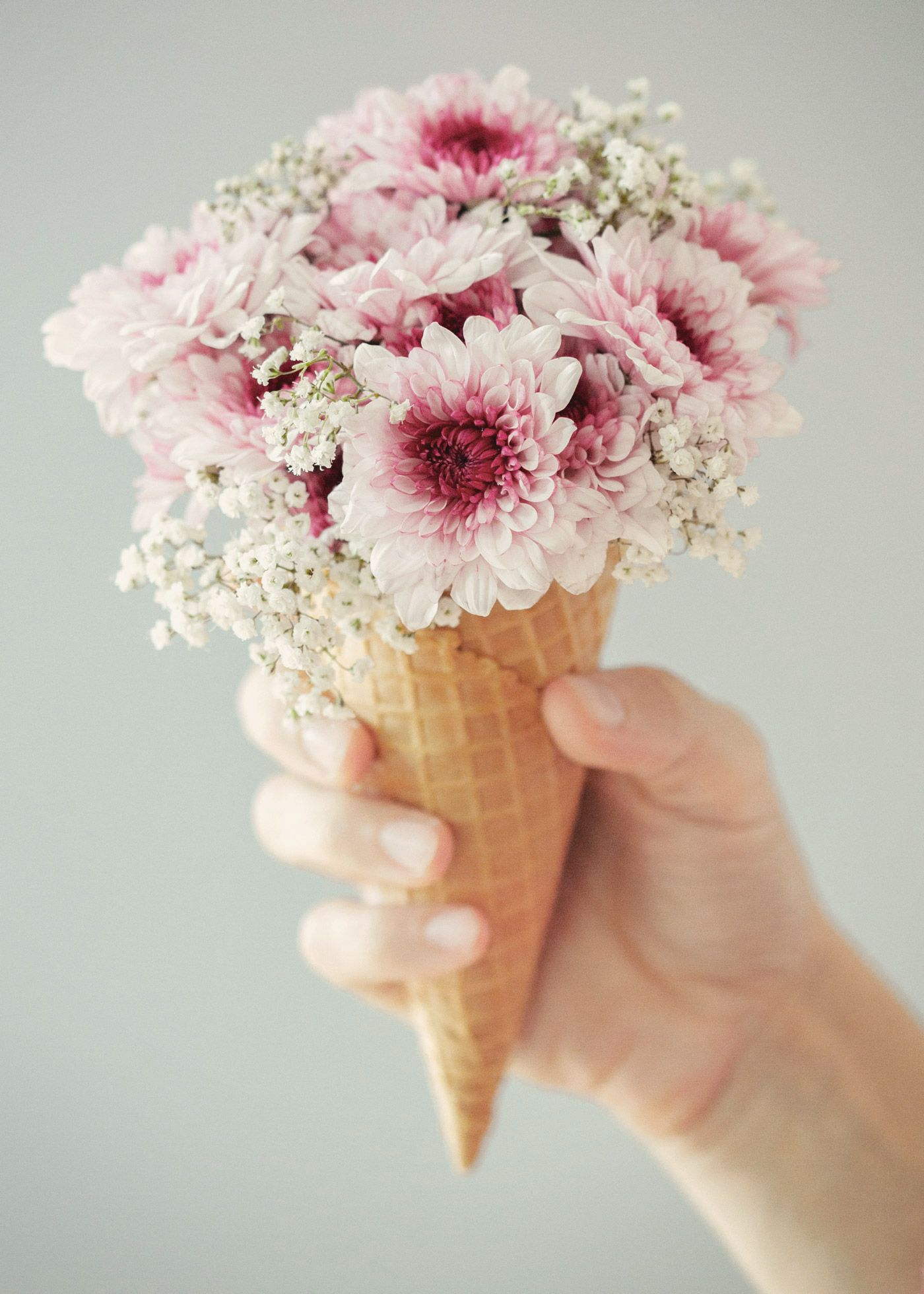 Rose Gold Wallpaper With Quotes Aesthetics Tumblr White Flowers Pictures To Pin On