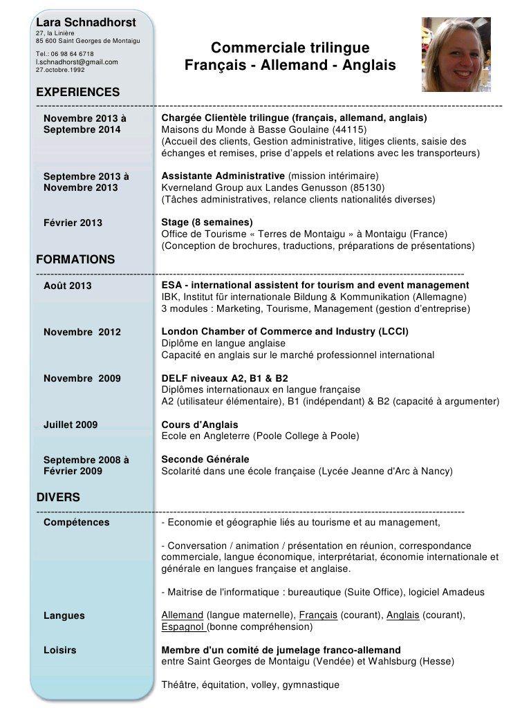 cv webmaster pdf