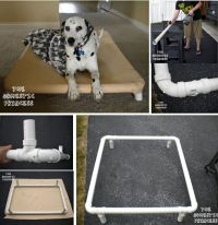 Best BBQ Chicken Kebab Ideas For Grilling   Diy dog bed ...