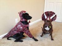 Raptor dog costume http://www.amazon.com/gp/customer-media ...