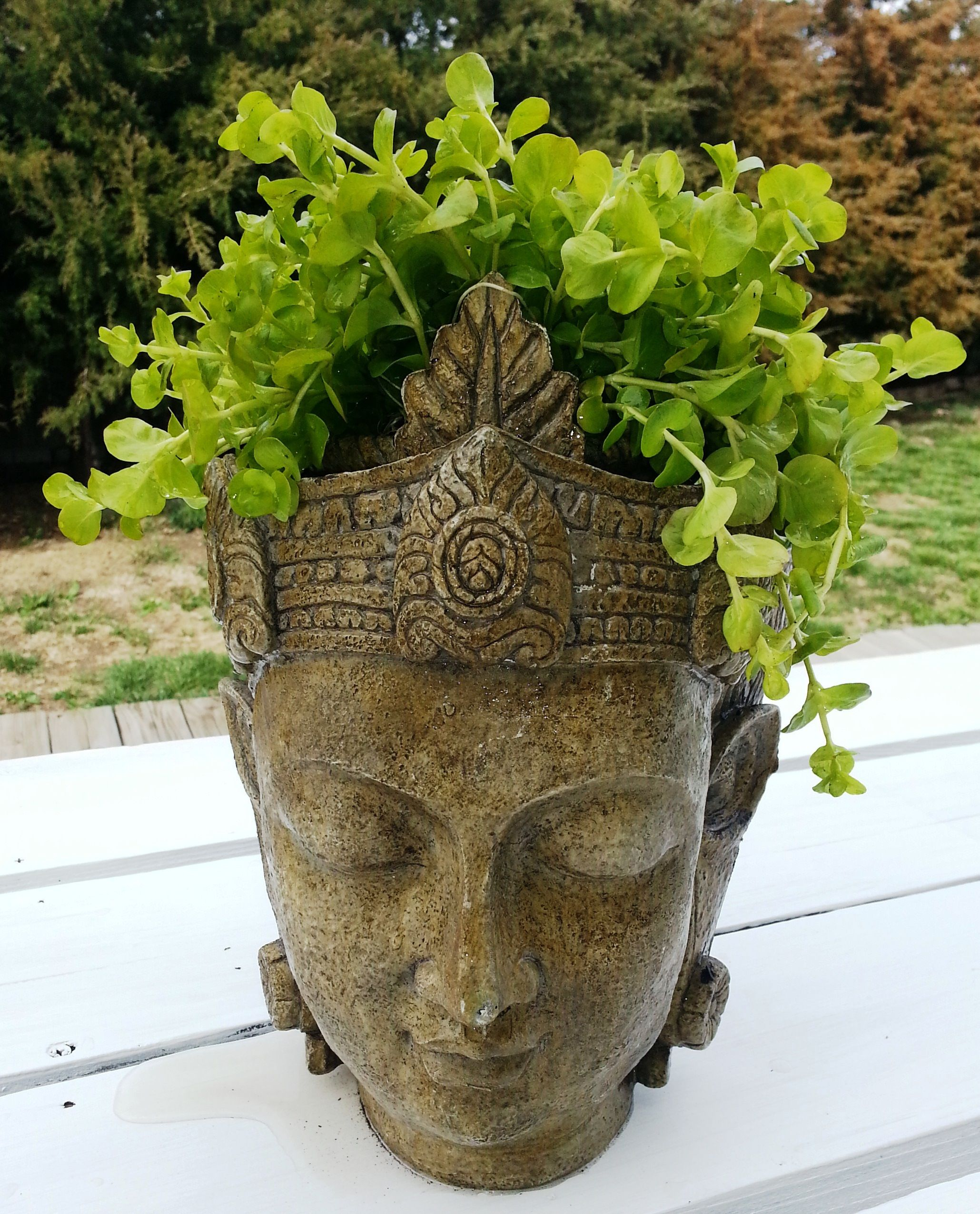 Planter Heads Buddha Head Planter Made From Resin Landscape