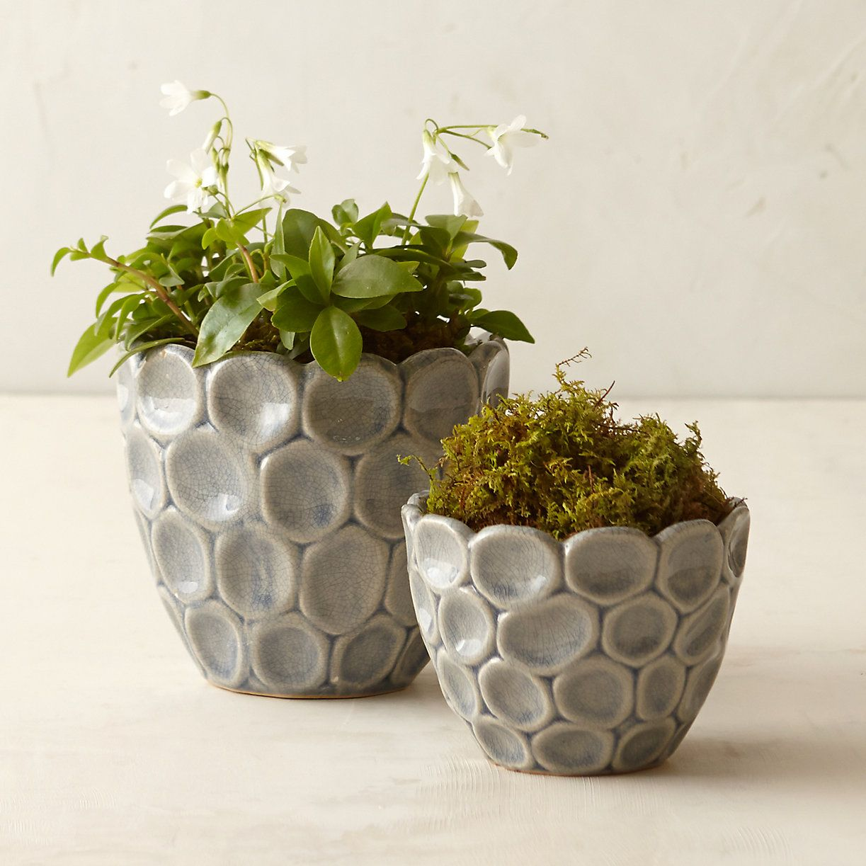 Ceramic Flower Planters Layered Circles Pot Contemporary Patterns And Pottery