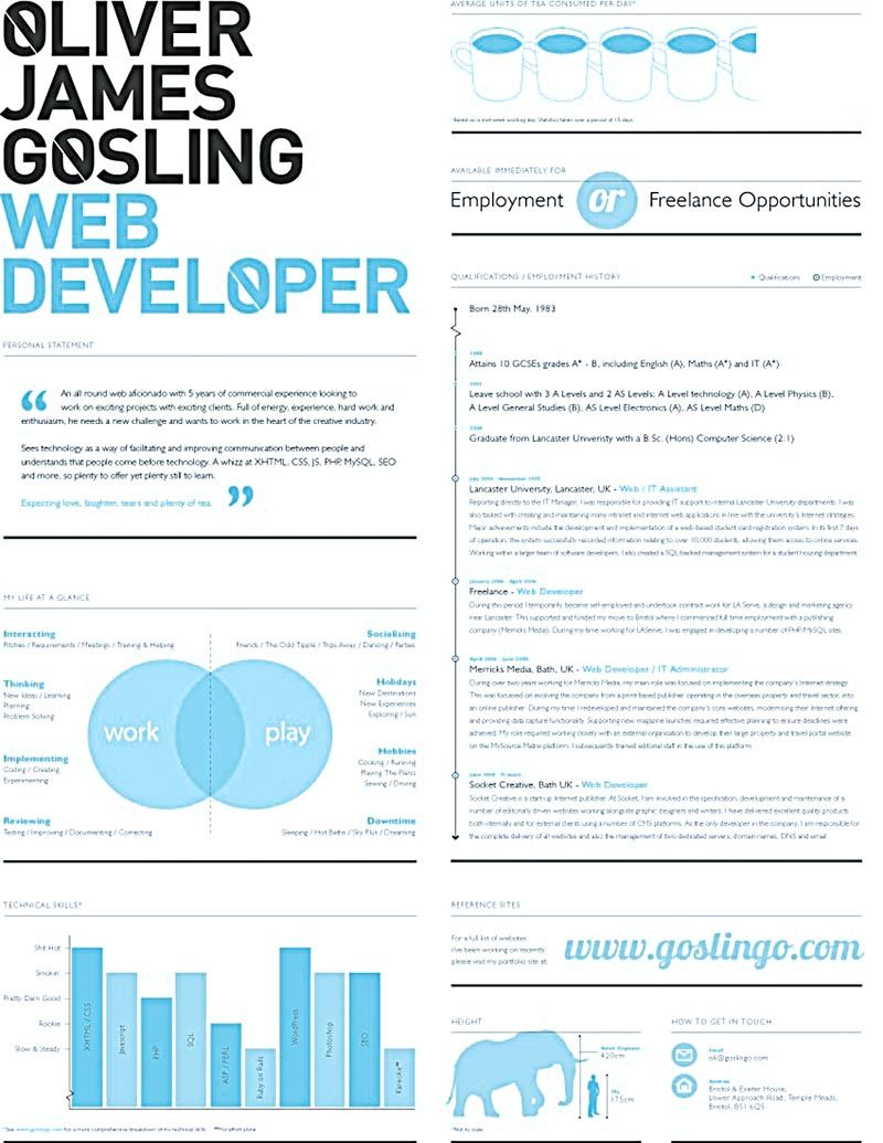 resume for ui developer ui developer resume