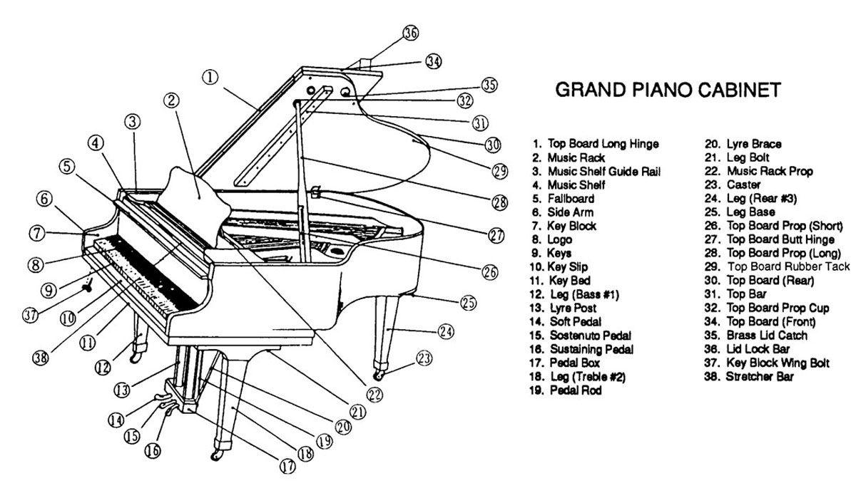 baby grand piano parts diagram