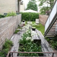 Very Narrow Modern Garden - good for side of the house as ...