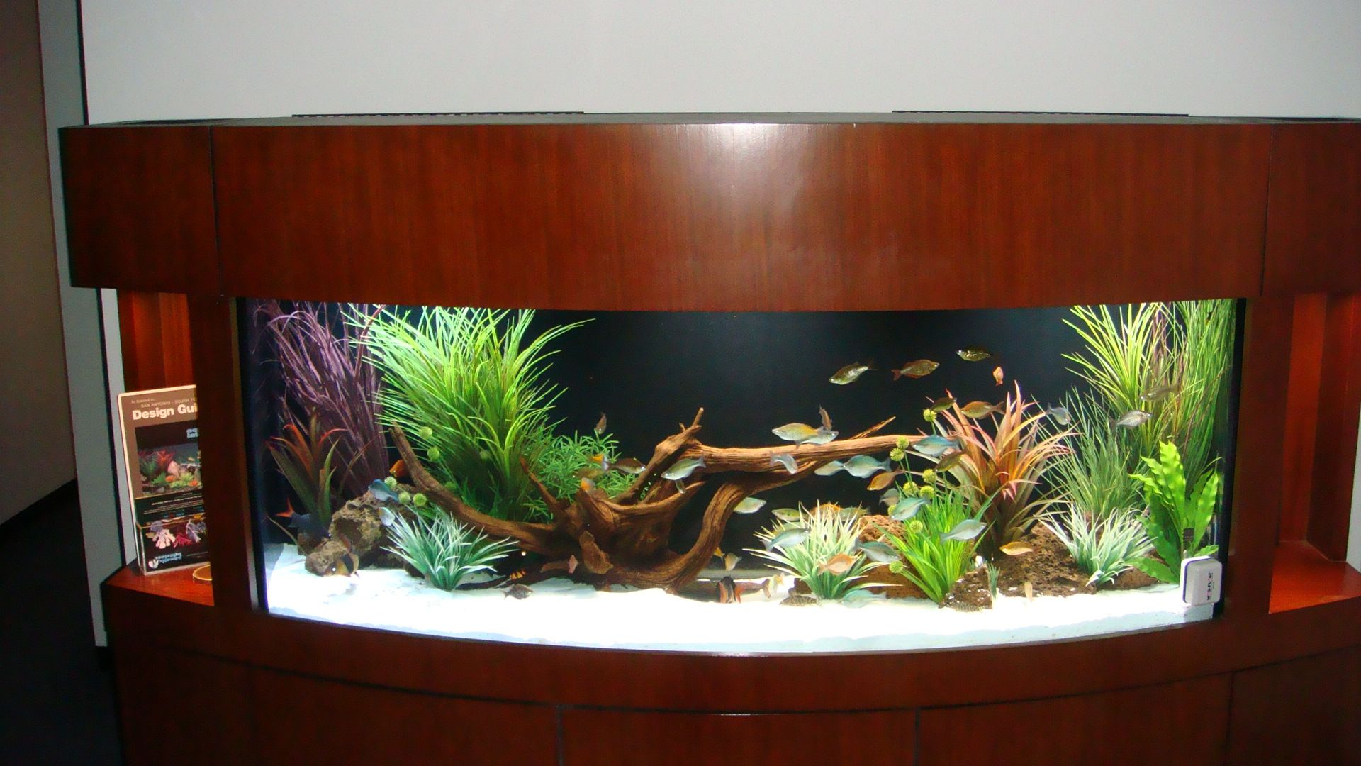 Tall Fish Tank Decoration