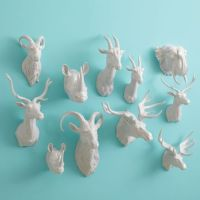 ceramic animal wall mounts | the macabre | Pinterest ...