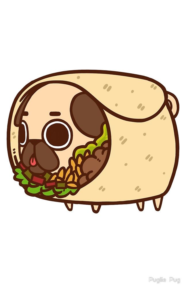 Cute Cartoon Sushi Wallpaper Puglie Burrito By Puglie Pug Illustration Pinterest