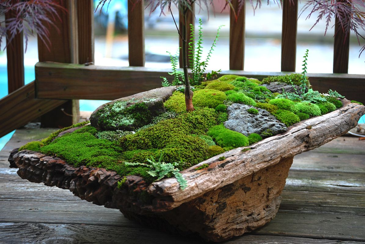 Indoor Zen Garden Ideas Index Of Blog Wp Content Uploads 2012 01 Gardens