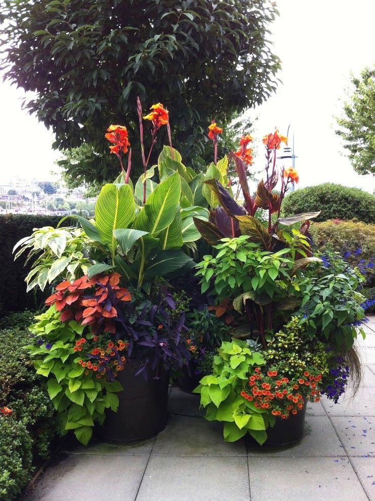 Stunning Container Garden Ideas for Landscape Tropical design - container garden design ideas
