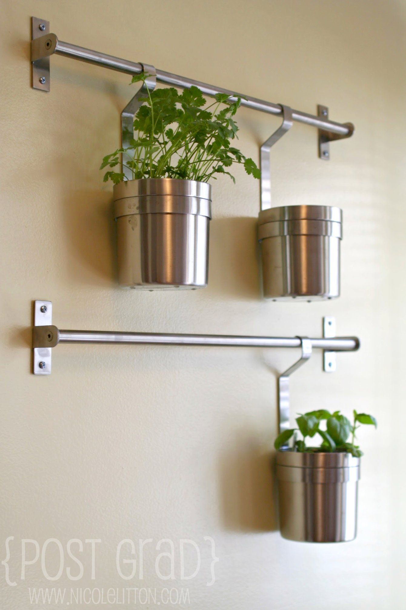 Hangplant Ikea Hang Plants In Kitchen Using Ikea Grundtal Herb Wall