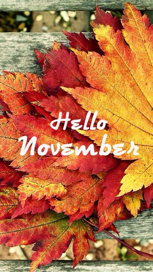 Free Fall Cell Phone Wallpapers Hello November Thanksgiving Decorating Pinterest