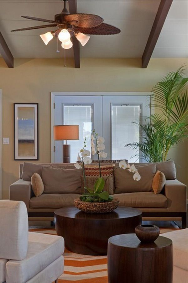 Tropical Living Room Design with Brown Couch and Palm Tree For - tropical living room furniture