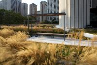 Nathan Phillips Square Podium Roof Garden by PLANT ...