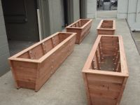 Large redwood planter boxes made for tall bamboo. | Trick ...