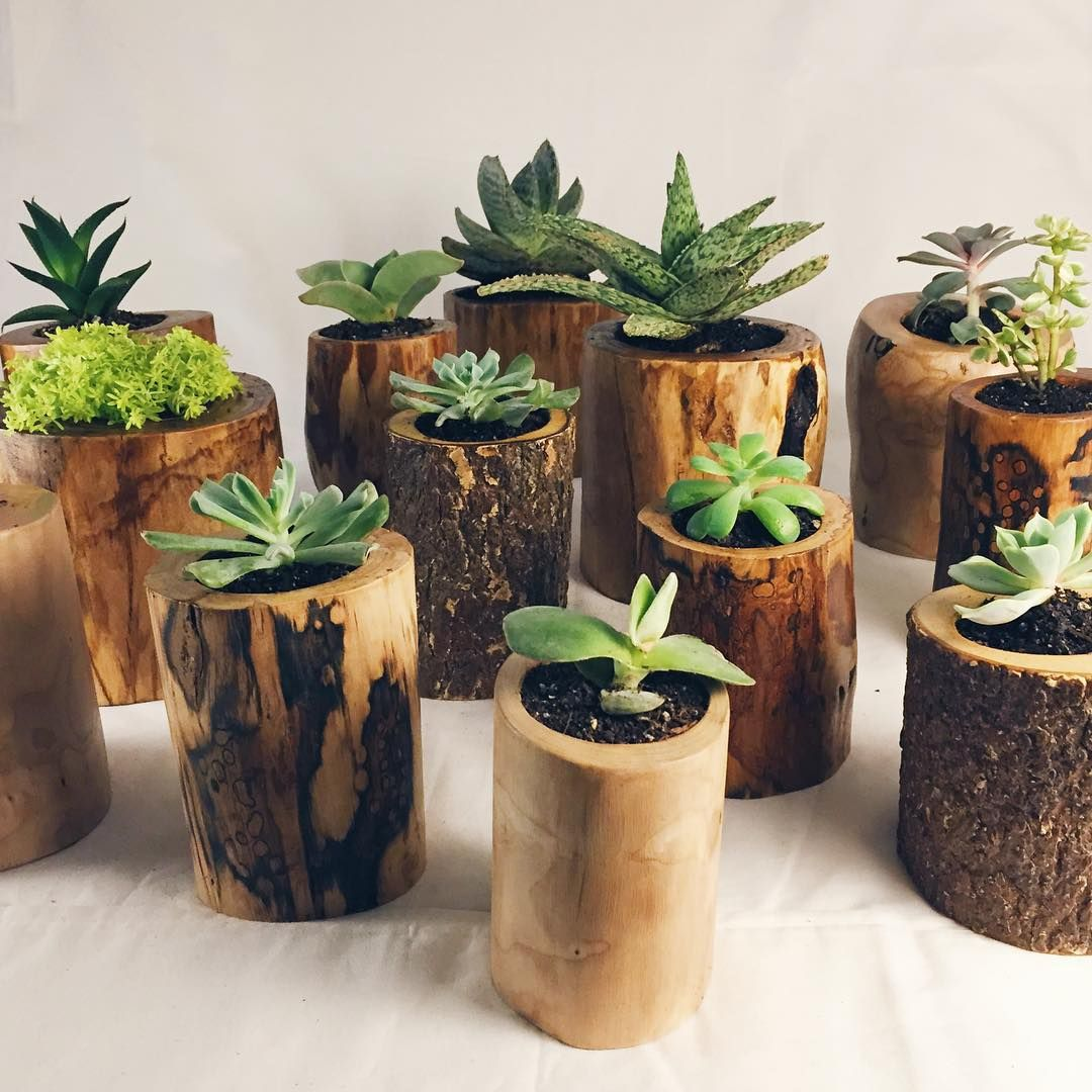 Cactus Pots For Sale Camp Hunt Camphunt Co Chicago Wooden Planters For