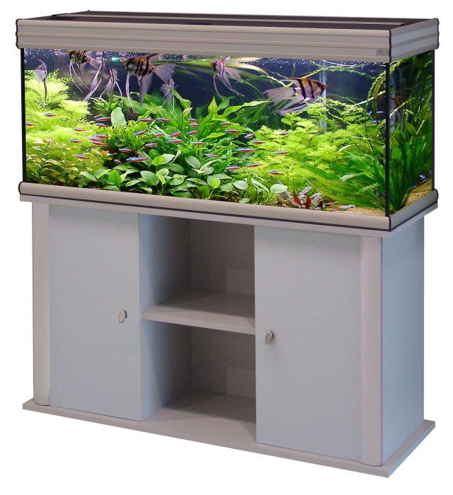 Tropica Aquarium Plants   Plant list A Z | aquariums | Pinterest