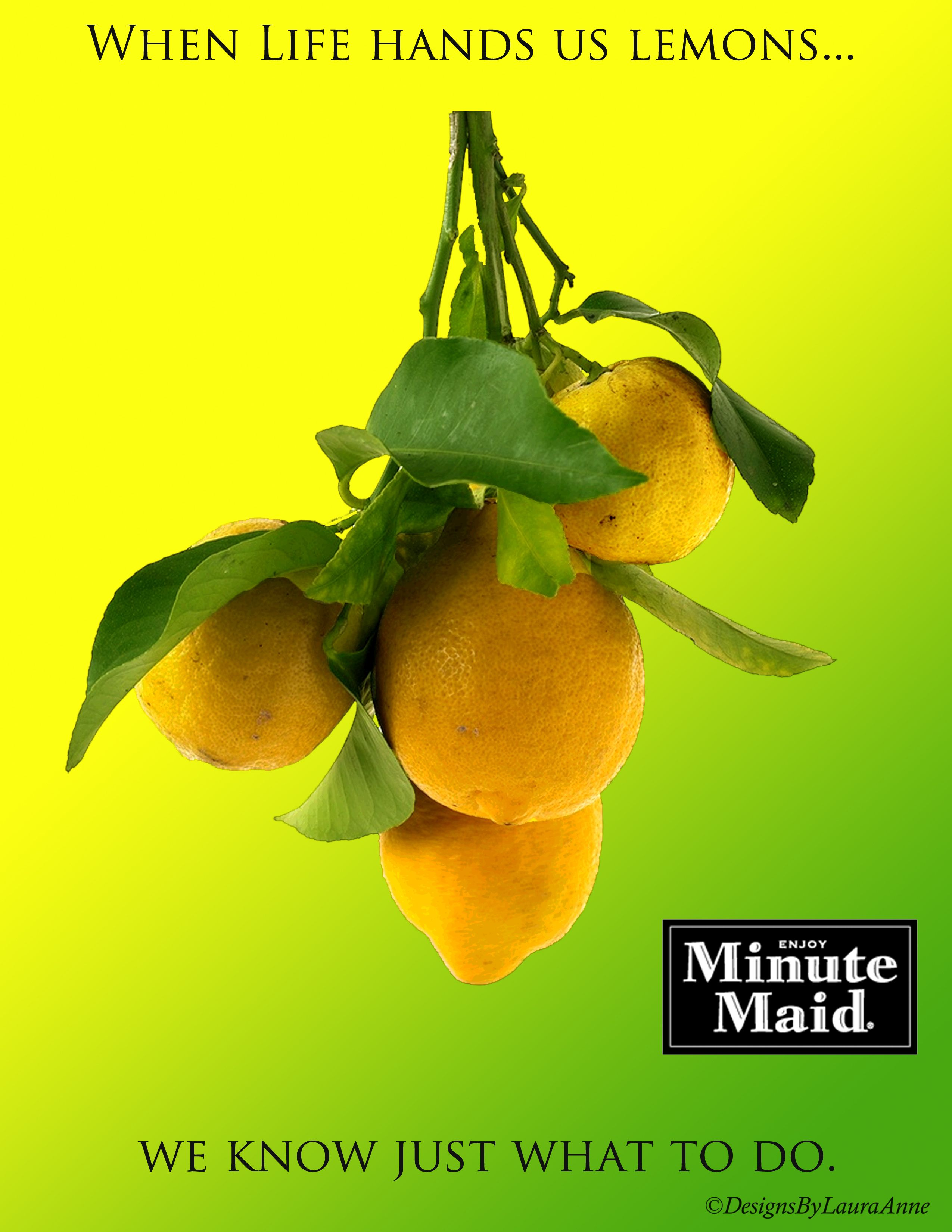 Piece Ad Portfolio Piece 4 Minute Maid Ad Created For Elements Of
