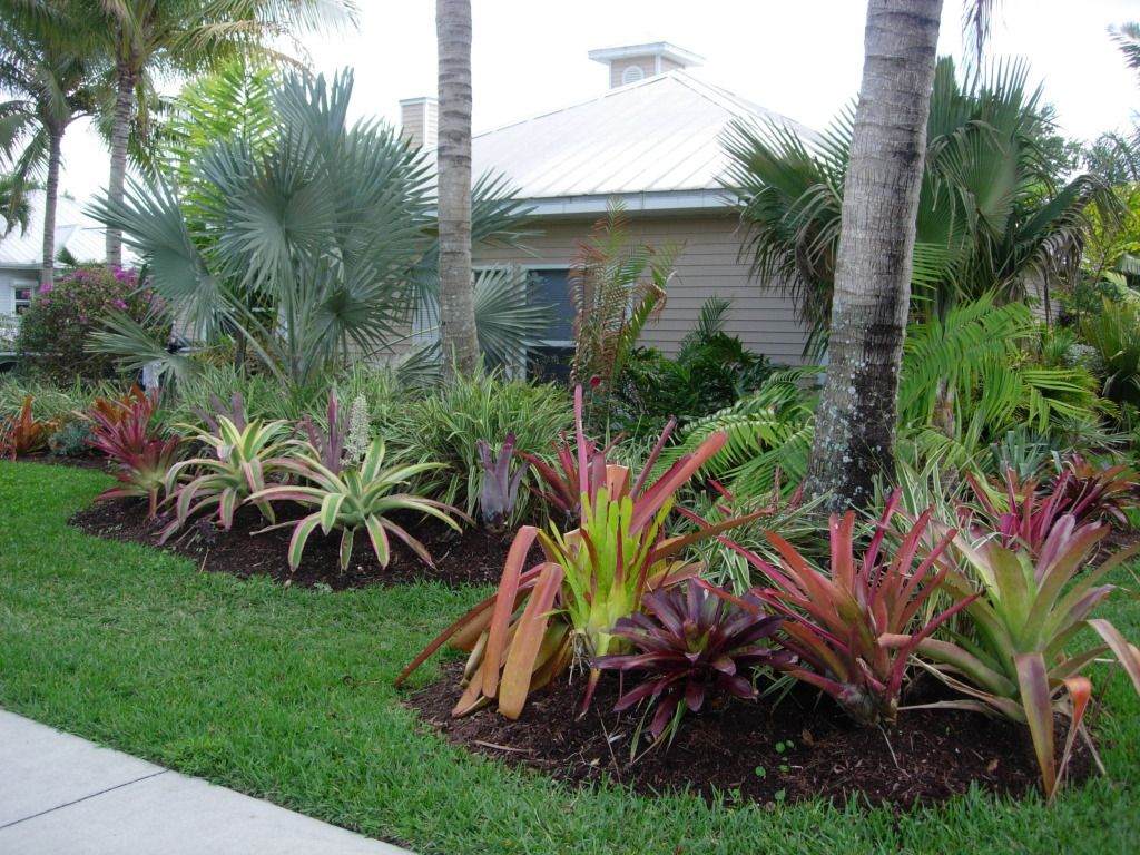 front yard landscaing with tropical