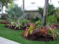 front yard landscaing with tropical | Seabreeze ...