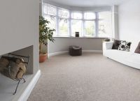 Neutral Colored Living Room Carpet