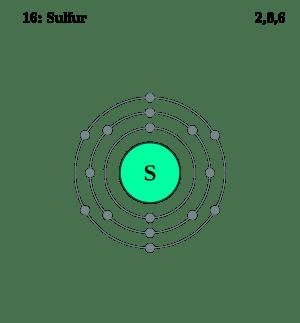 sulfur diagram biology