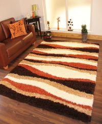 Shag Area Rugs, Rugs Carpets, Orange Area Rug Living Room ...