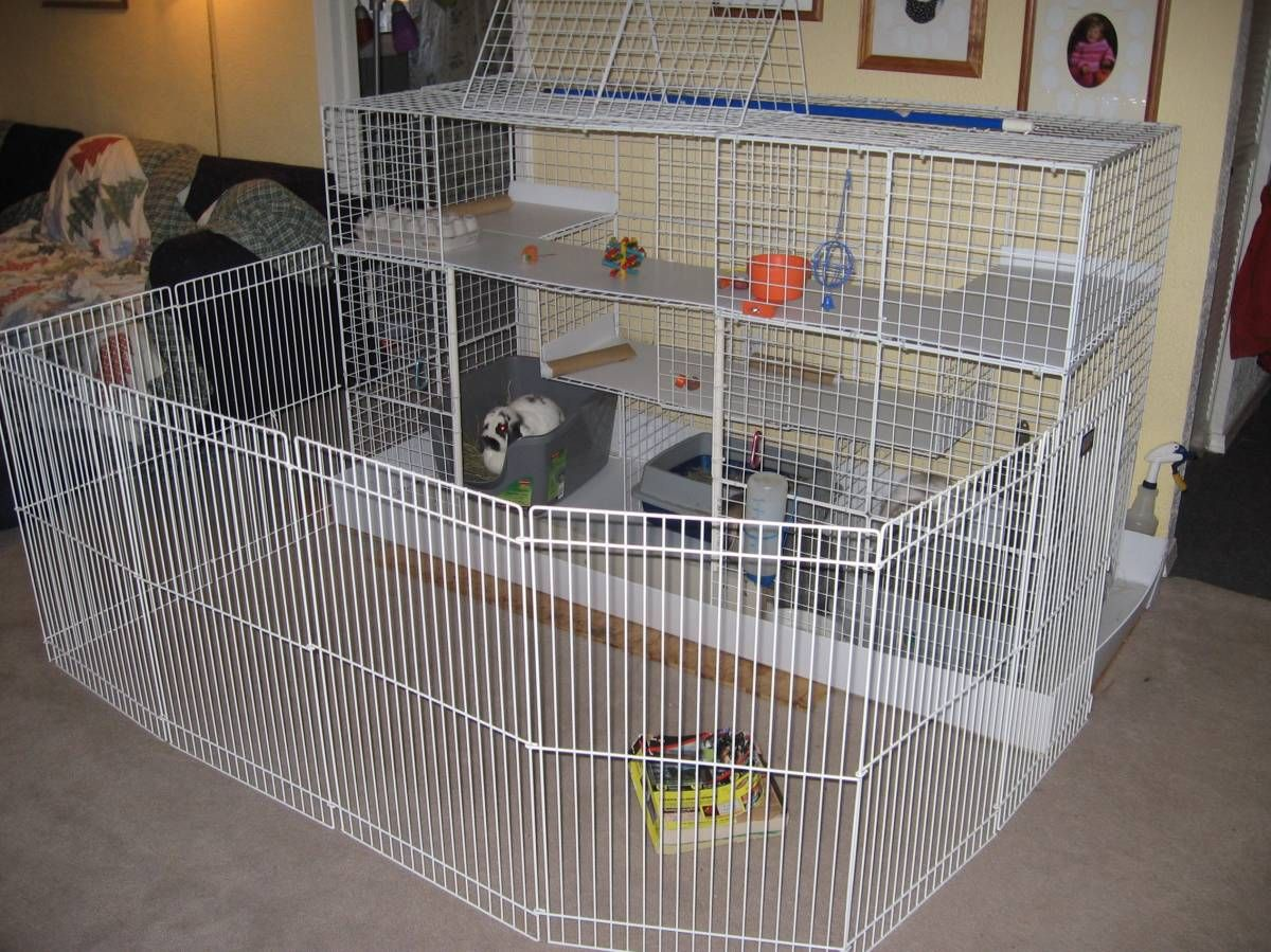 Diy Cage For Rabbit Rabbit Cage Multilevel Photo Two Of Three Guinea Pig
