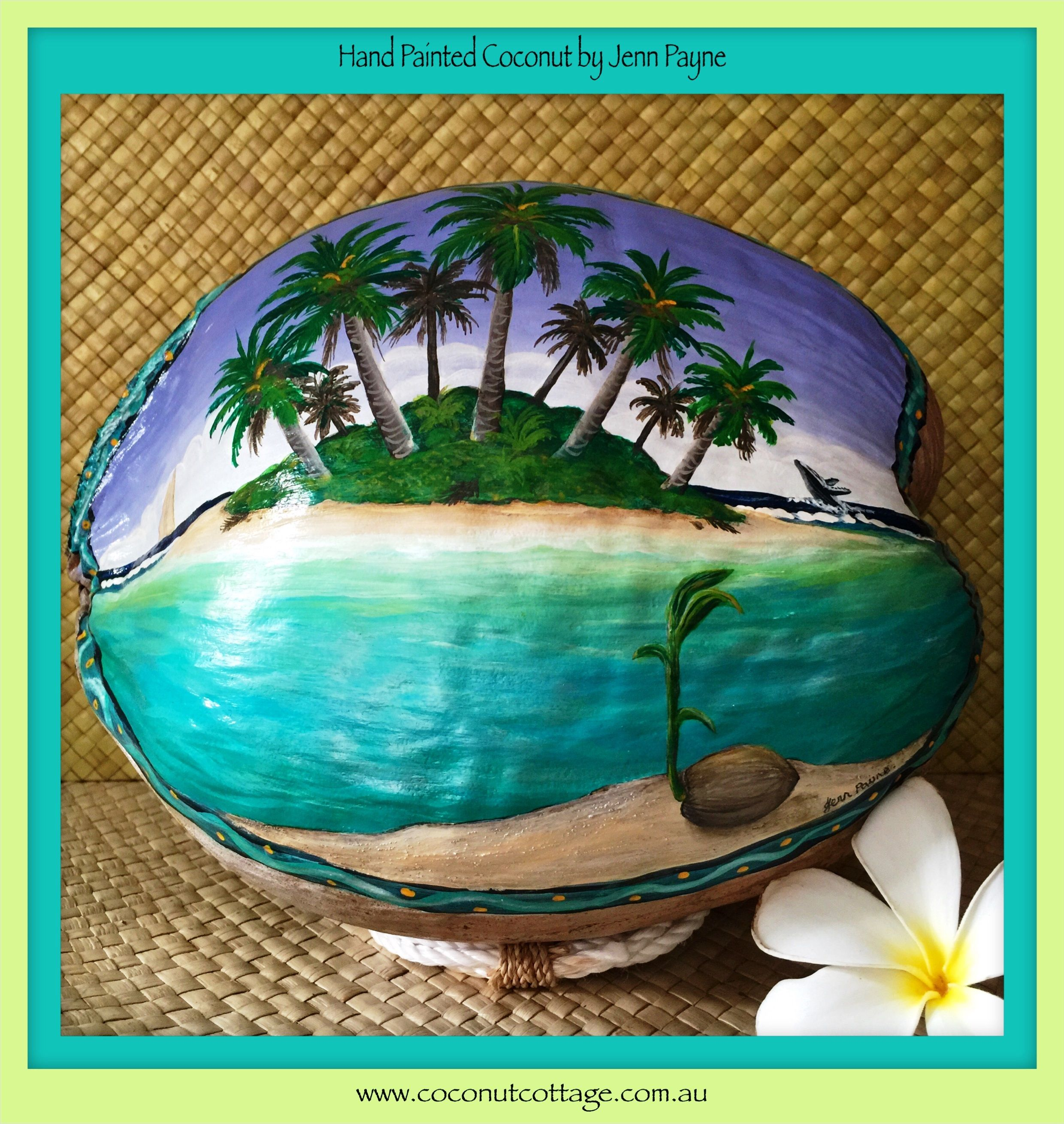 Tropical Artwork Coconuts Coconut Cottage Is The Home Of Original