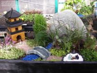 tiny japanese garden | Miniature & Fairy Gardens ...