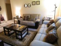 cheetah themed rooms   my animal print living room ...