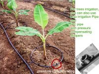 Agricultural Irrigation Drip Pipe China Supplier, View ...