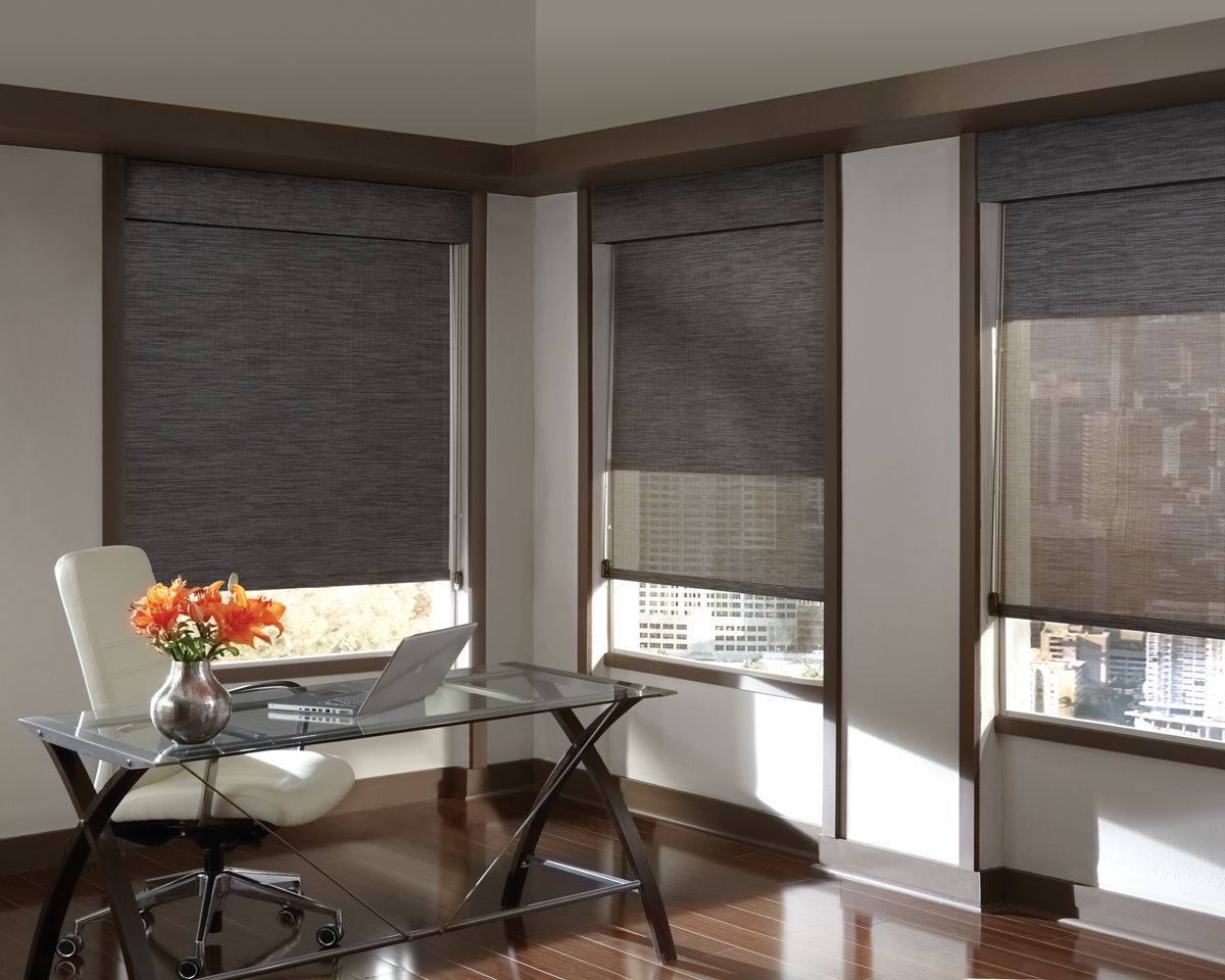 The hunter douglas designer screen shades offer simple functionality at a great price the variety roller shadesroller blindswindow